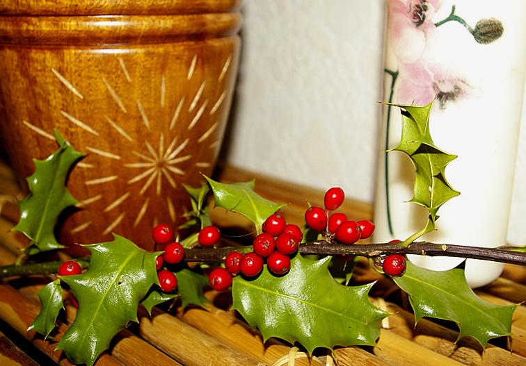 D coration de no l un beau bouquet de houx avec des - Decoration de noel avec du houx ...