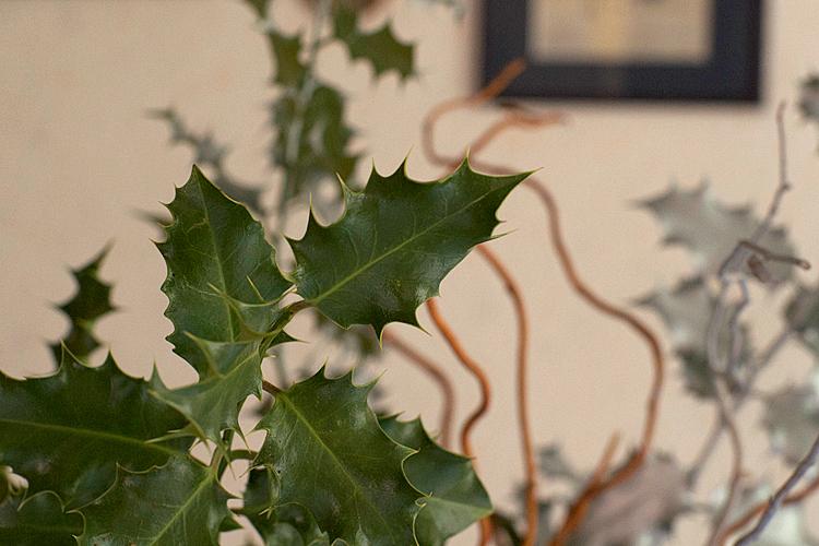 un bouquet de houx pour noël