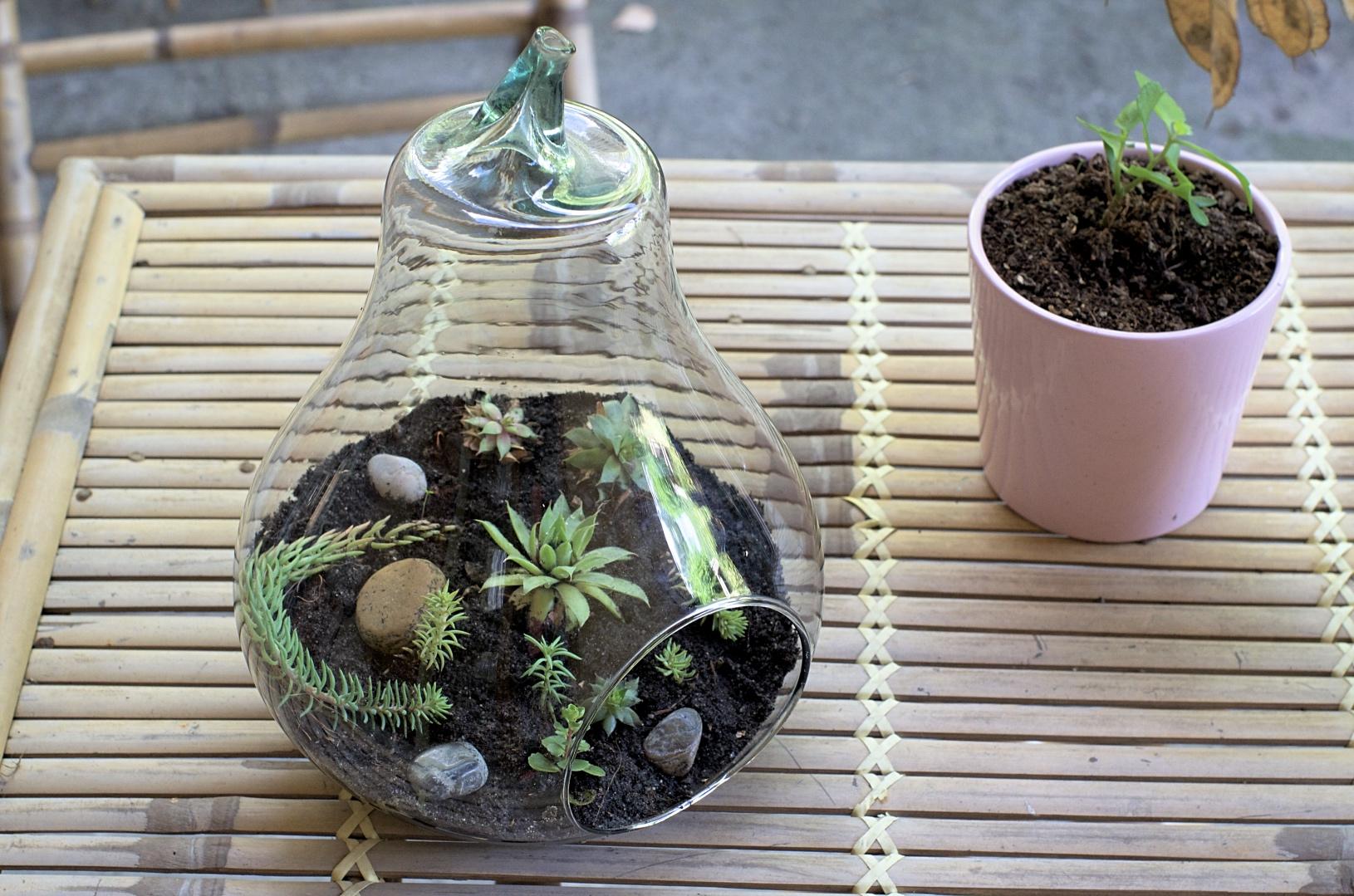 fabriquer un terrarium pour l 39 automne. Black Bedroom Furniture Sets. Home Design Ideas