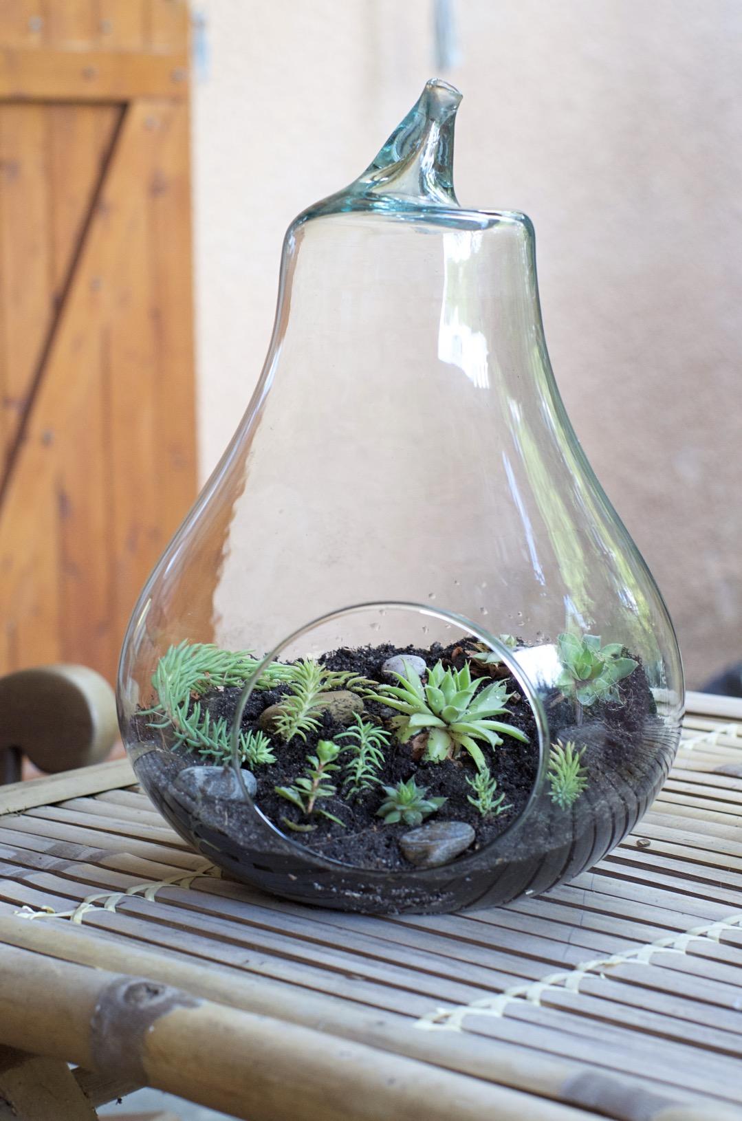 fabriquer un terrarium pour l 39 automne apodioxe. Black Bedroom Furniture Sets. Home Design Ideas