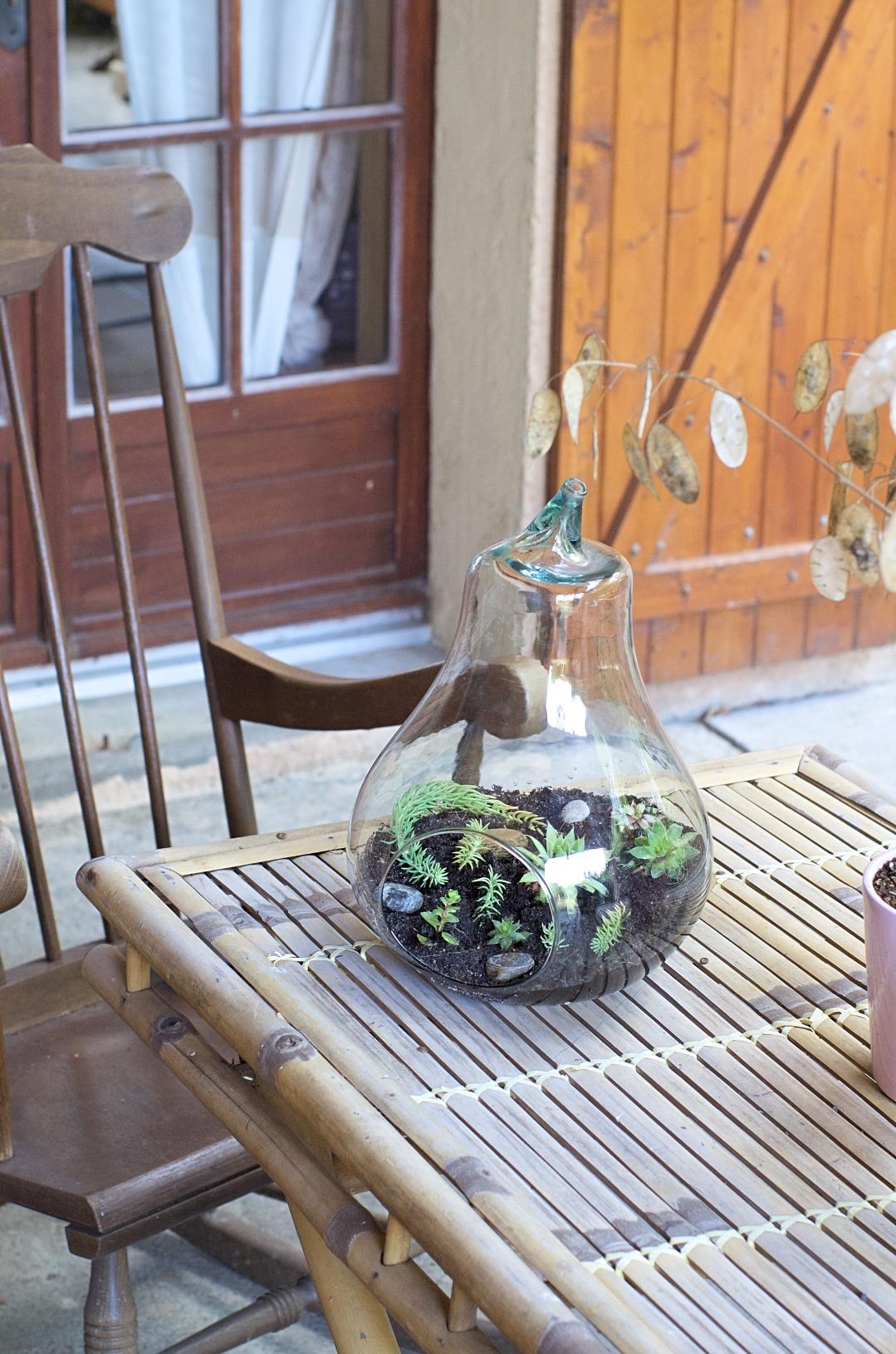 fabriquer terrarium verre