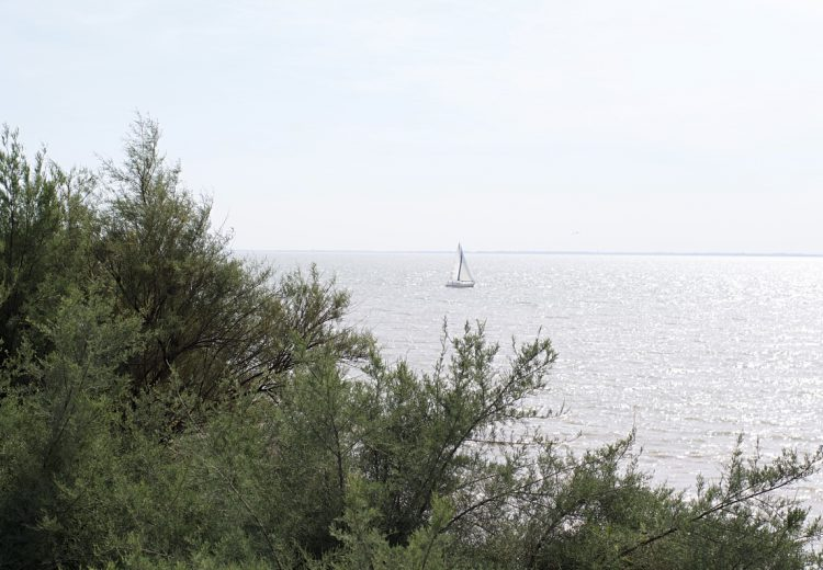 voilier-talmont-gironde