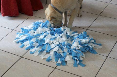 """DIY – Fabriquer un """"snuffle mat"""" ou tapis de fouille pour chien"""